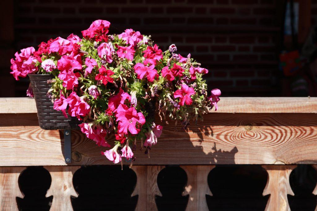 pot-de-fleur-balcon